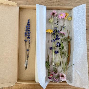 Luiaard portemonnee bloem